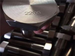 EN 1.4462 F51 UNS S31803 SAF 2205 screw